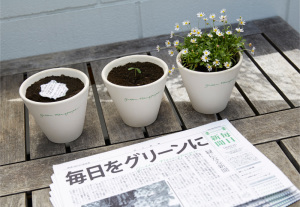 Green newspaper 2